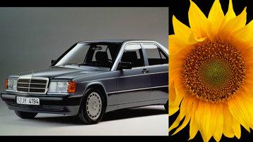 Ulei de floarea soarelui în loc de motorină. Avantaje şi dezavantaje
