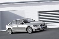 8 Audi pentru 8 rable