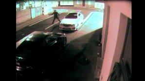 Hoţul din maşini şi cărămida bumerang: viralul zilei de luni