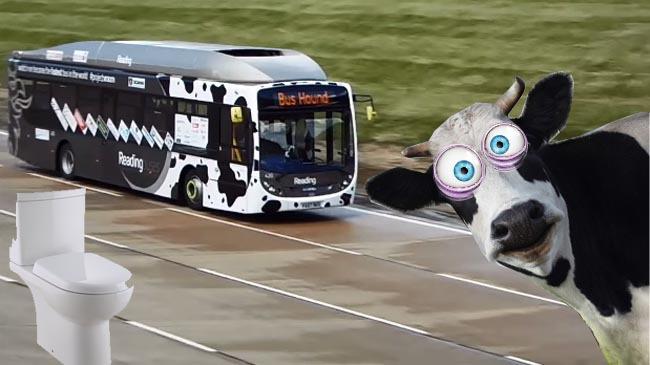 Tu tragi apa după ele, ei folosesc dejecţiile pentru recorduri de viteză... cu autobuzul