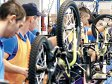 Romania Has Three Bicycle and Part Makers Among Top 200 Local Exporters