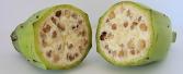 Cum arătau fructele şi legumele înainte de a fi cultivate de către om - GALERIE FOTO