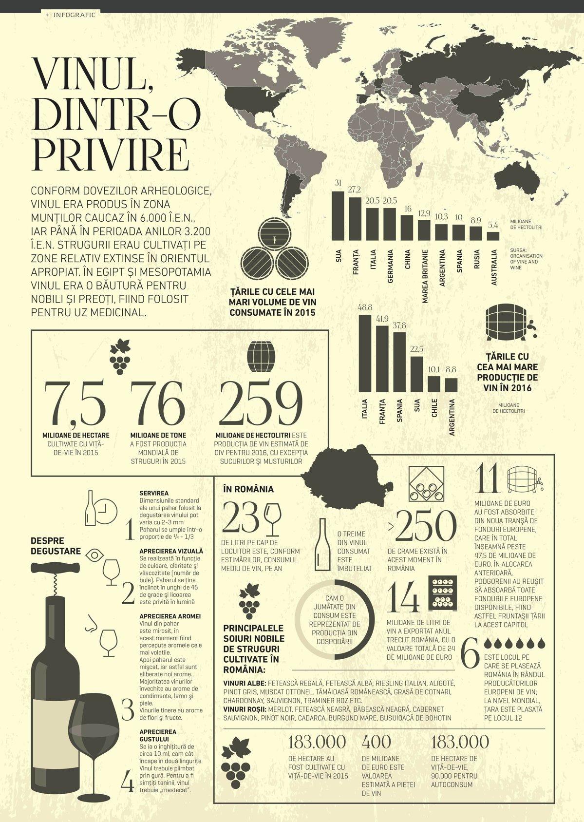 Vinul, dintr-o privire