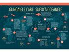 Gunoaiele care sufocă oceanele