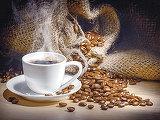Investitorii care au pariat pe cafea şi minereu de fier au câştigat sume uriaşe în ultimul an