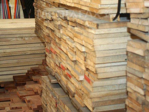 Controalele de la Holzindustrie Schweighofer, extinse şi la firme care furnizează lemn sau produc PAL