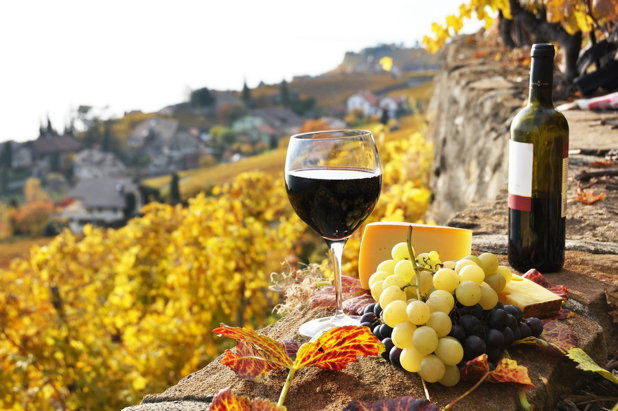 60 de crame din România practică turism viticol. În ce zonă a ţării sunt cele mai multe crame