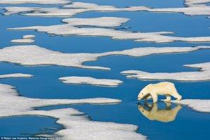 Cele mai impresionante fotografii din noua carte lansată de National Geographic - FOTO