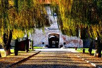 Unul dintre cele mai frumose castele din lume se află în România - GALERIE FOTO
