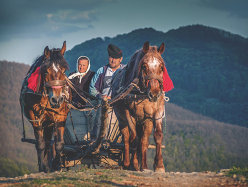 ANUNŢ DE INTERES! Acum o parte din români vor putea să-şi găsească cei mai ÎNDEPĂRTAŢI strămoşi