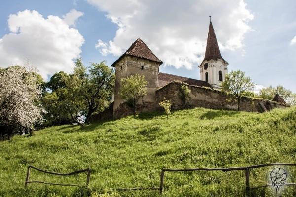Satul din România unde o casă costă cât un salariu mediu. Peisajul este mirific aici