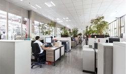 Una dintre cele mai mari companii din România angajează 300 de oameni. Vezi care sunt poziţiile disponibile