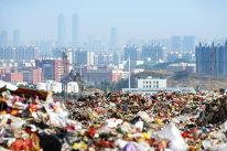 INCREDIBIL! A făcut o avere COLOSALĂ din produse pe care românii le aruncă la gunoi! O idee de business fabuloasă la care sigur nu v-aţi gândit