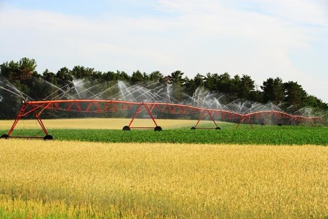 ministerul-agriculturii-lanseaza-o-sesiune-de-proiecte-pentru-irigatii-de-200-milioane-euro-cu-finantare-nerambursabila