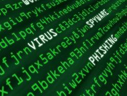 Bitdefender: Serviciile de transfer de fişiere, cele mai vizate de ameninţări de tip phishing în prima parte a anului