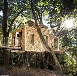 """""""Tarzan ar fi invidios"""". A fost creată cea mai luxoasă căsuţă din copac - GALERIE FOTO"""