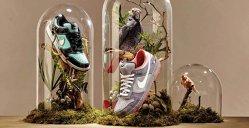 De ce colecţionează oamenii pantofi?
