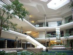 Ce soluţii au mall-urile împotriva extincţiei