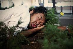 Imagini incredibile din ţara unde angajaţii adorm pe stradă de epuizare - GALERIE FOTO