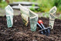 Cum să porneşti o afacere fără bani în şapte paşi
