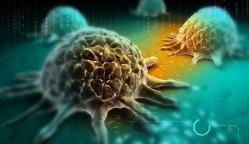 Savanţii au găsit o posibilă cauză a apariţiei cancerului