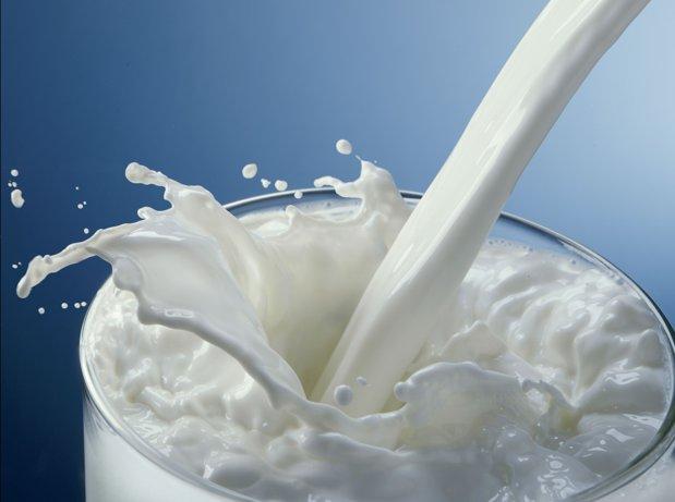 Cum abilitatea de a digera laptele i-a îmbogăţit pe europeni