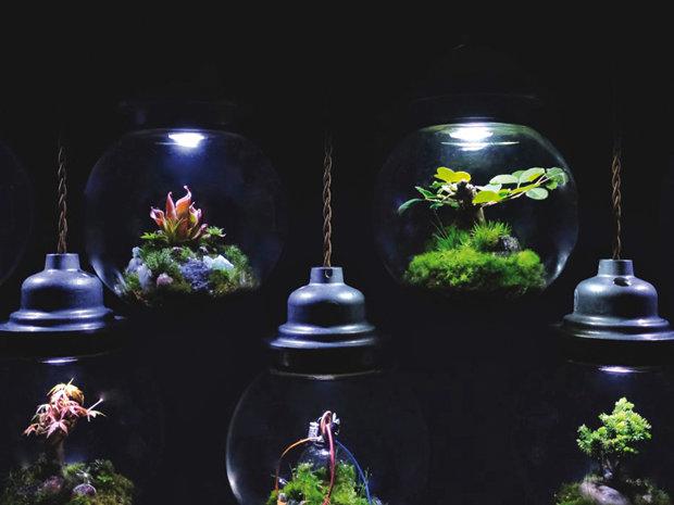 Colonii spaţiale din sticlă