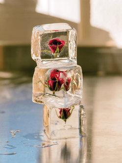 Arta dintr-un cub de gheaţă
