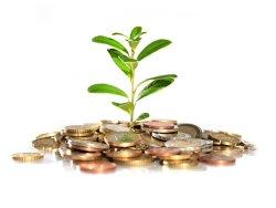 Investiţia care aduce 800 de dolari zilnic şi pe care oricine o poate face