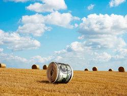 Dovada că se pot face bani frumoşi şi din creditele pentru fermieri