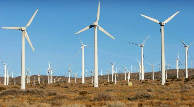 Dobrogea, raiul energiei eoliene