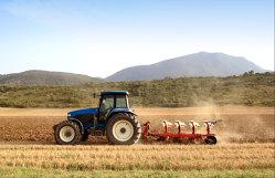 Deşi suprafaţa agricolă a Olandei este 10 ori mai mică decât cea a României, ţara lalelelor are venituri de două ori mai mari decât ţara noastră. Cum reuşeşte
