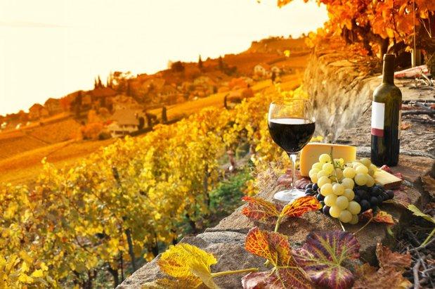 Povestea brandurilor româneşti din vin