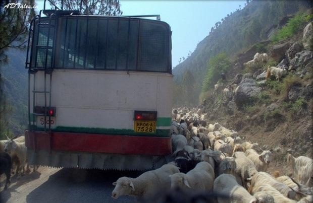 Blocaj în trafic