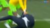 VIDEO | Imaginile nebuniei din timpul meciului Brazilia - Costa Rica! Ce a putut face selecţionerul Selecao după golul din minutul 90+1