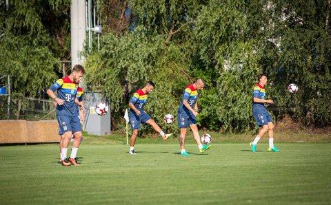 Jucătorii echipei naţionale au intrat în programul stabilit de selecţionerul Christoph Daum. 14 jucători prezenţi sub comanda noului selecţioner