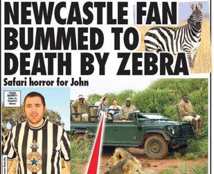 Un suporter al lui Newcastle a fost ucis de o zebră în timpul unui safari în Tanzania