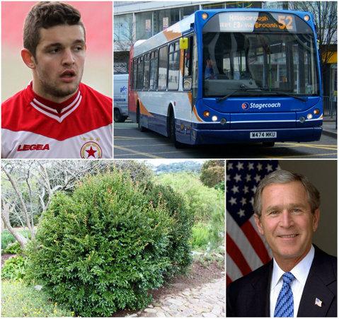 """Autobuz sau tufiş? După Marica sau Raţ, numele încă unui fotbalist român este prilej de glume pentru fanii englezi: """"Îl vor parca în faţa porţilor?"""""""
