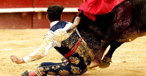 Imagini şocante cu un toreador din Spania. VIDEO   Momentul în care s-a pus în genunchi în faţa taurului, iar lucrurile au luat o turnură dramatică
