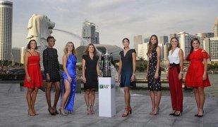 """VOT   Oglindă, oglinjoară, cine-i cea mai populară în WTA? Simona Halep încearcă să o detroneze pe """"the People's Princess"""""""