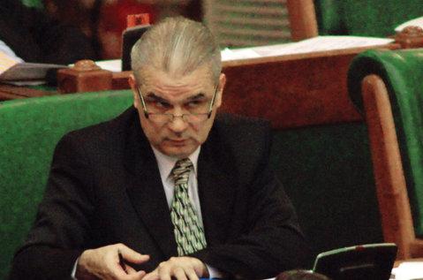 Iordănescu nu chiuleşte de la Senat