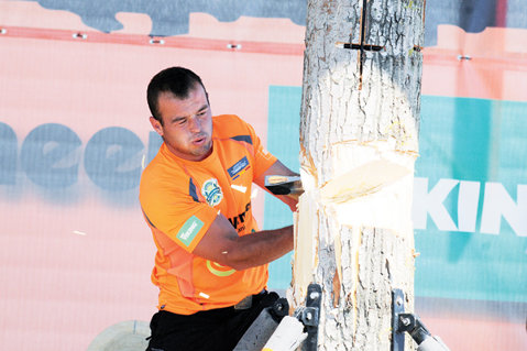 Nicolae Nyamcsuk, noul şef la tăiat de lemne