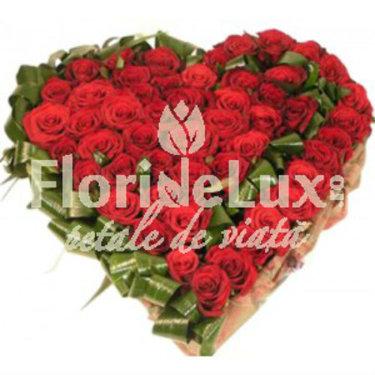 http://www.floridelux.ro/inima-49-trandafiri-si-aspedistra.html