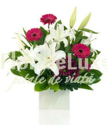 http://www.floridelux.ro/aranjament-floral-crini-gerbera-crizanteme.html
