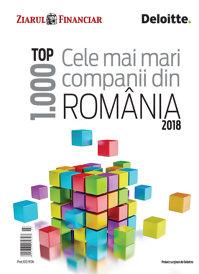 Cumpără online Anuarul Top 1.000 cele mai mari companii din România