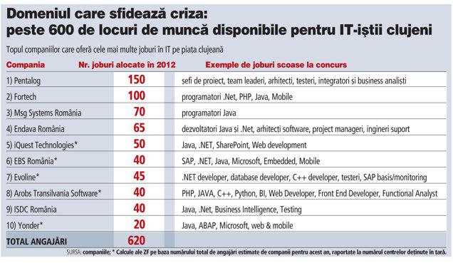 Veste bună pentru softiştii clujeni: companiile din IT au disponibile peste 600 de joburi anul acesta
