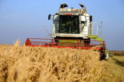 Producătorii agricoli anunţă scumpirea alimentelor, acuzând condiţiile meteo şi lipsa de politici agricole