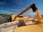 Agro-traderi cu afaceri de 836 mil. euro pe an şi-au schimbat CEO-ul în 2013