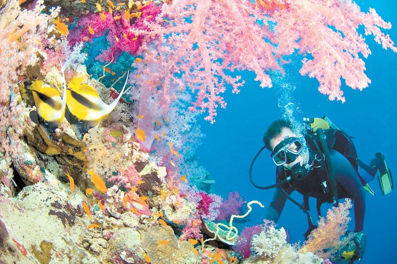 Top 10 locuri pentru scufundări. Cele mai bune locuri și țări pentru scufundări