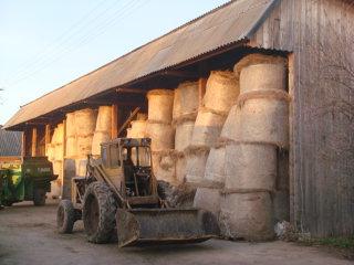 Viaţa la ţară: cum se fac afacerile cu lapte într-o fermă de familie care are grijă de 200 de vaci